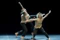 Danse Vend�e 2014 et 2015