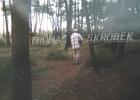Thomas Skrobek