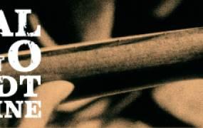 Festival Django Reinhardt 2015