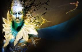 Spectacle Cirque Du Soleil - Quidam
