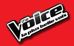 Concert The Voice Tour 2015