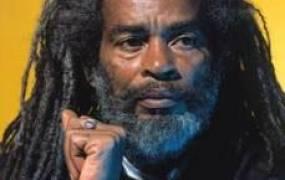 Concert Reggae Aux Arenes