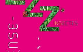 Spectacle ZZZ'insectes (extraits)