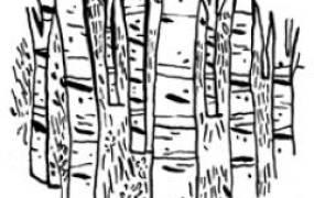 Spectacle Les cahiers de Nijinski