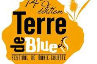 Terre de Blues 2013