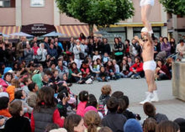 Festival des Arts Nomades 2015