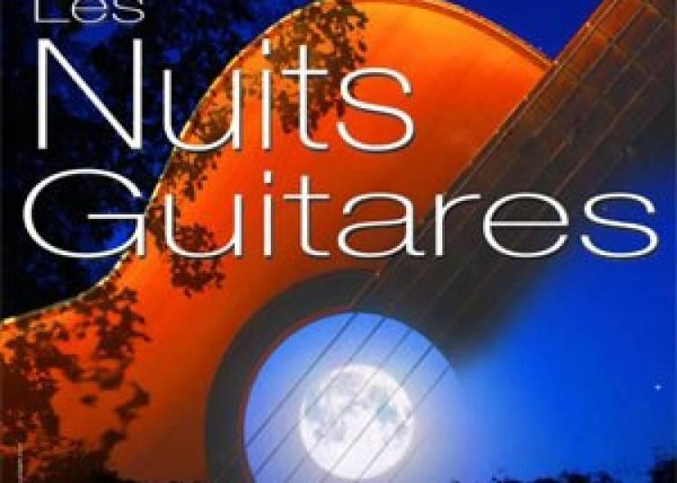 Les nuits guitares 2015