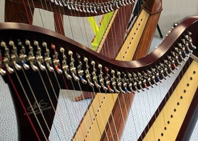 Grande Soirée de la Harpe Celtique à Lorient