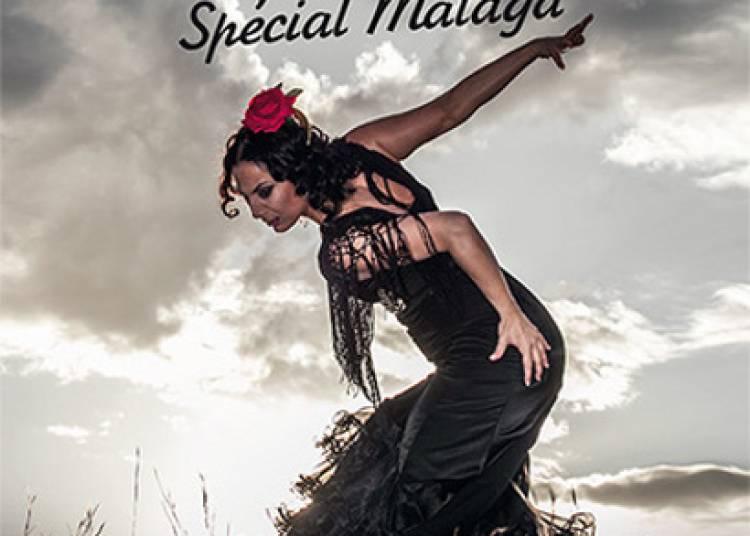 Festival Semaine Flamenco 2015