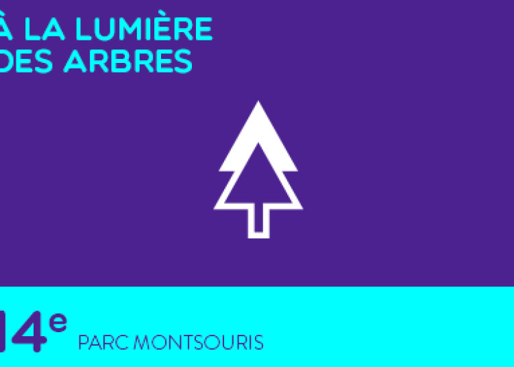 � la lumi�re des arbres � Paris 14�me
