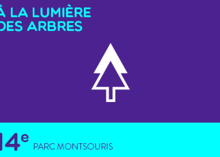 À la lumière des arbres à Paris 14ème