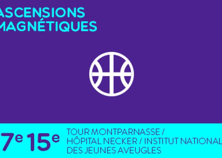 Ascensions magnétiques à Paris 15ème