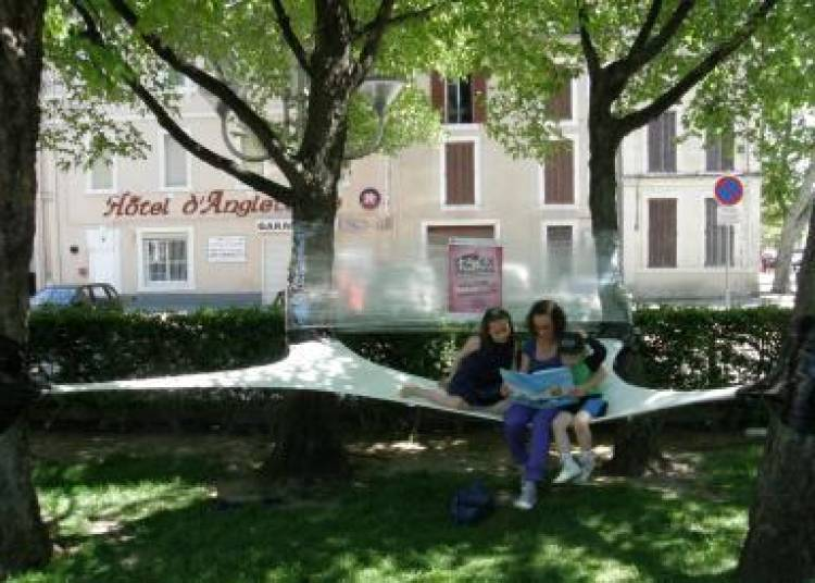 Réappropriations auprès de mon arbre à Paris 15ème
