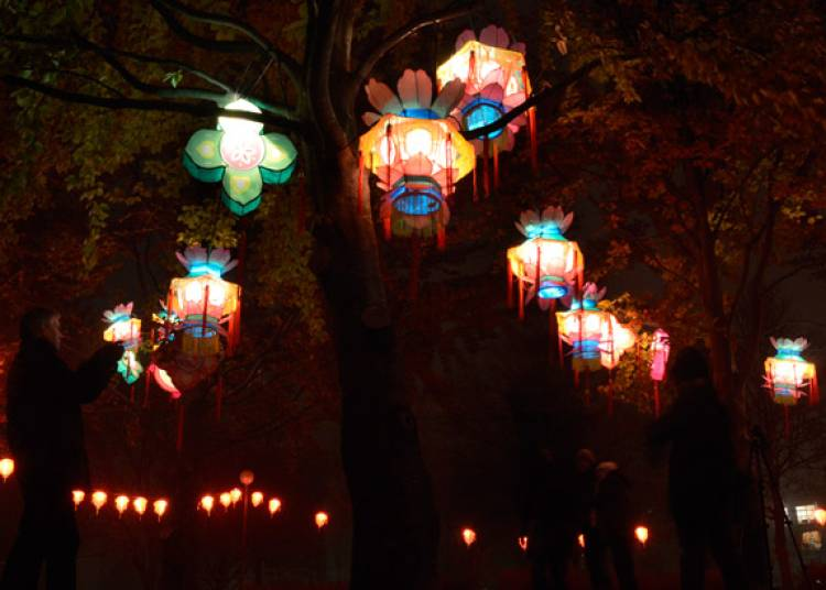 Lanternes de fête à Lyon