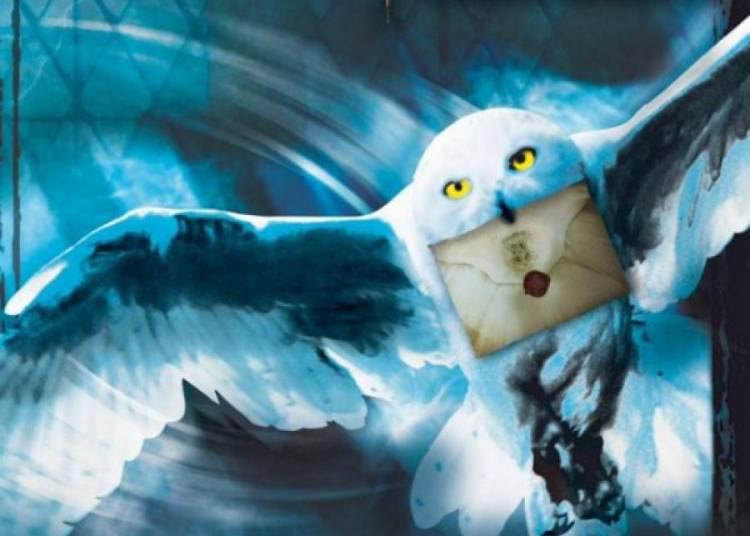 Harry Potter : l'exposition � La Plaine saint Denis