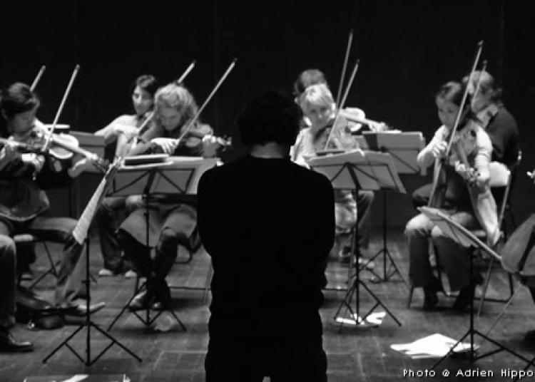 Integrale Des Quatuors � Dijon