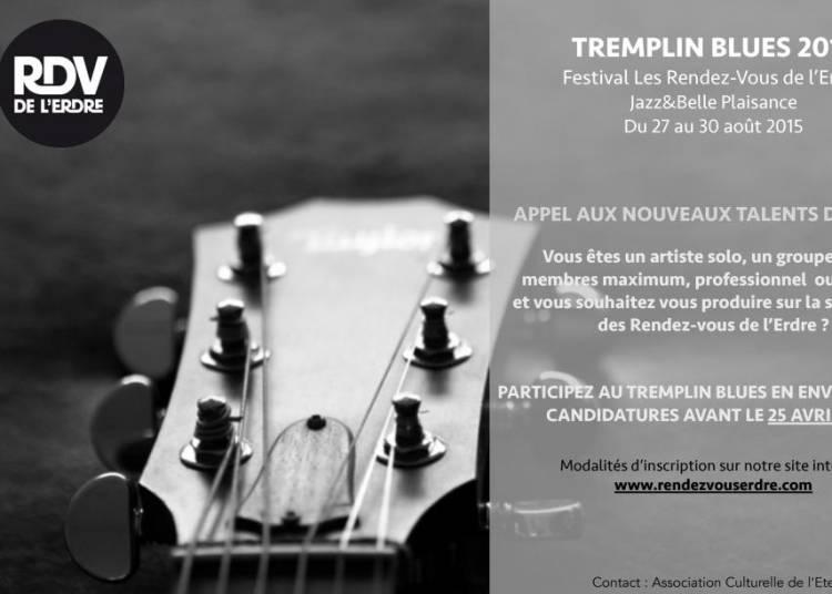 Tremplin Blues Les Rendez-Vous de l'Erdre � Nantes