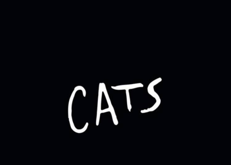 Cats � Paris 9�me