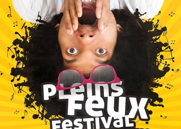 Festival Pleins Feux 2015