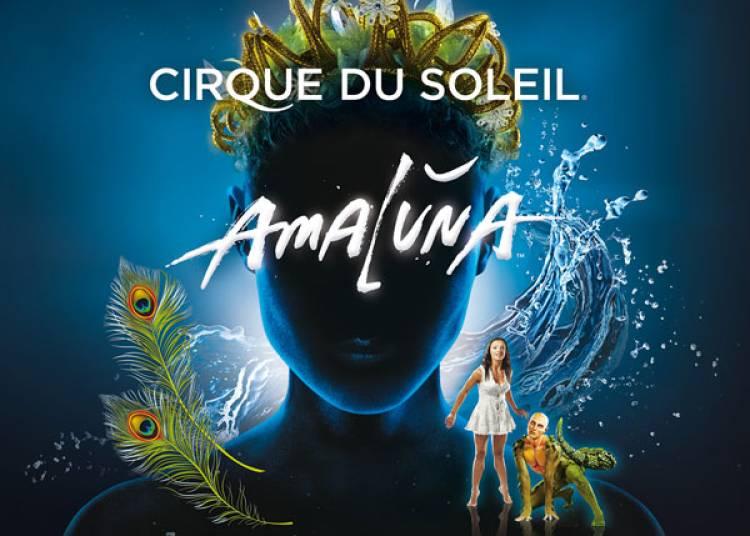 Cirque du soleil, Amaluna � Paris 16�me