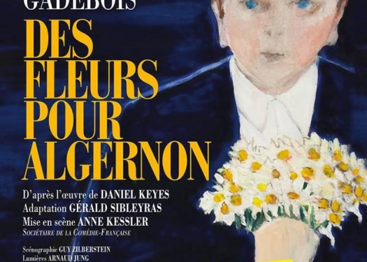 Des fleurs pour algernon � Paris 10�me