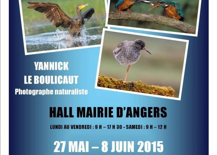 Yannick Le Boulicaut et l'association Angers Jumelages