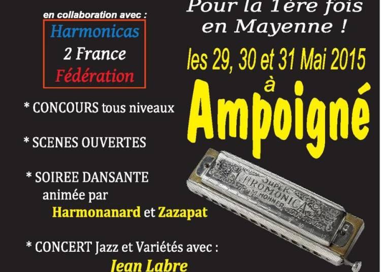 Festival Harmonica Ampoign� 2015
