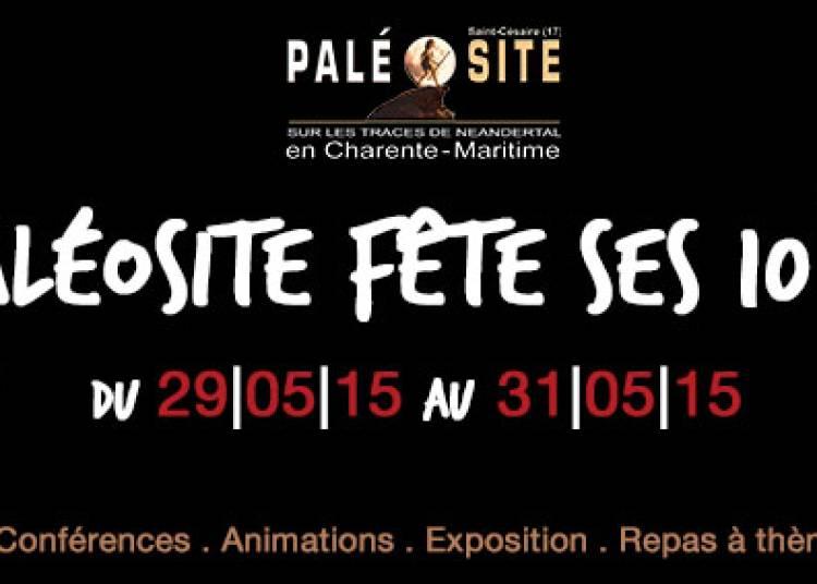 Le Pal�osite f�te ses 10 ans ! 2015