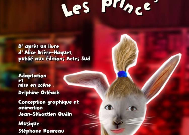 La princesse qui n'aimait pas les princes � Joinville le Pont