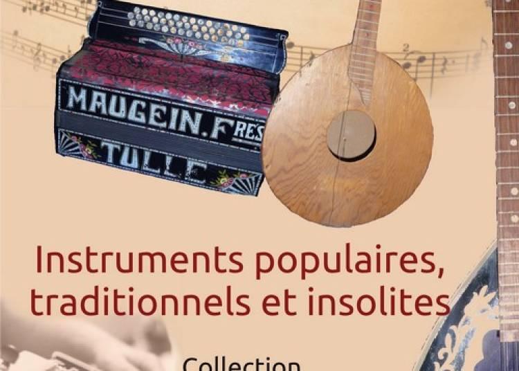 Exposition instruments de musique populaires, traditionnels et insolites � Saint Jean Bonnefonds