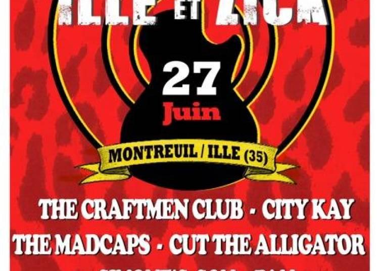 Festival Ille et Zick 2015