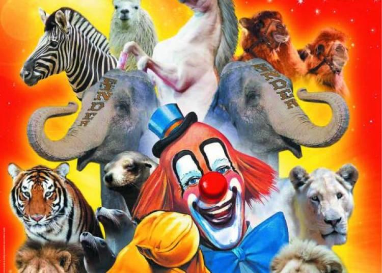 Cirque Pinder Jean Richard � Fouesnant