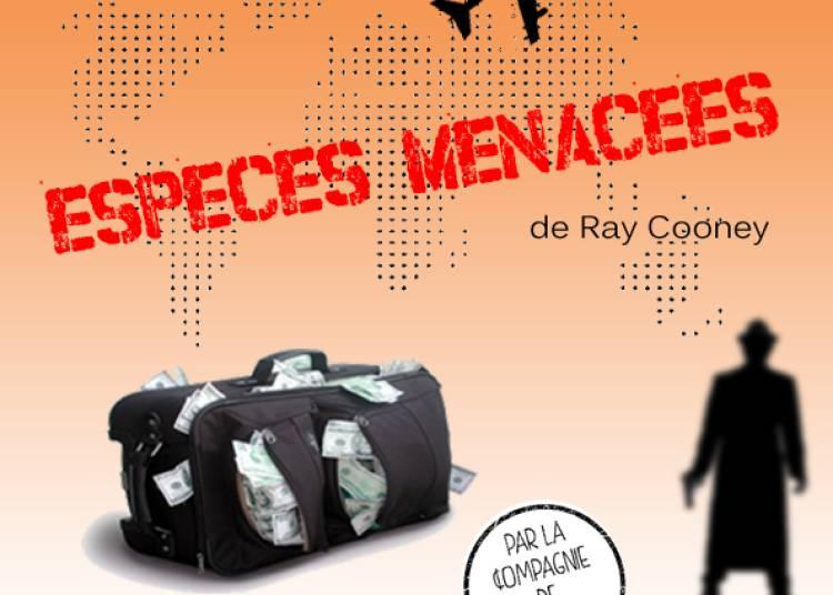 Esp�ces menac�es de Ray Cooney � Montauban