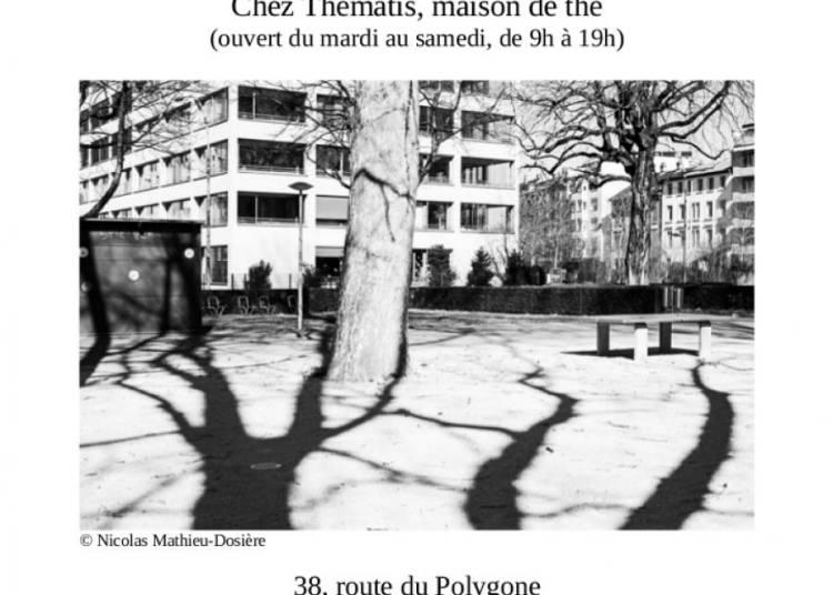 Nicolas Mathieu-Dosi�re � Strasbourg