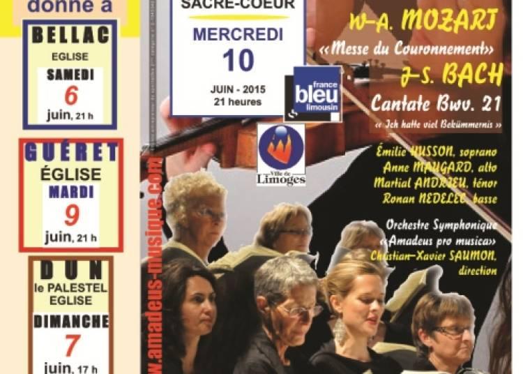 Harmonia Voce � Limoges