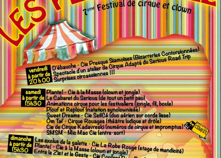 Festival Les PelleriNez 2015