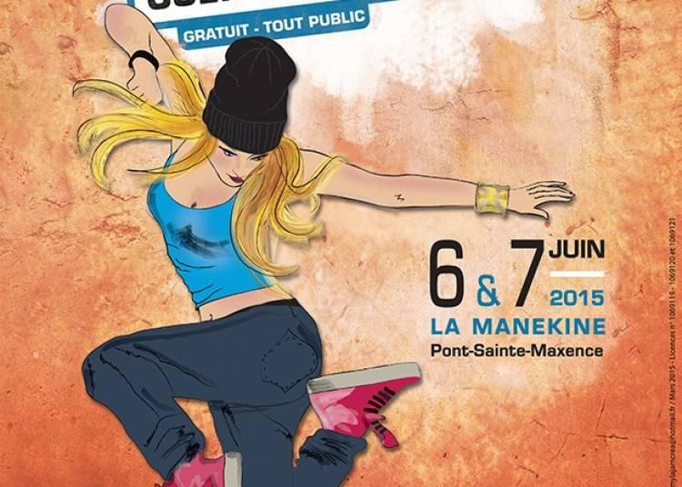Festival Les Emergences 2015