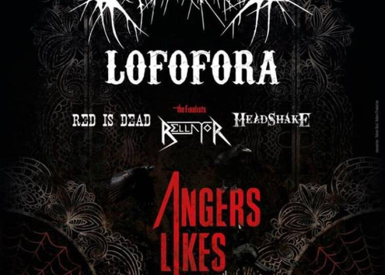 Finale Angers Likes Metal 2015