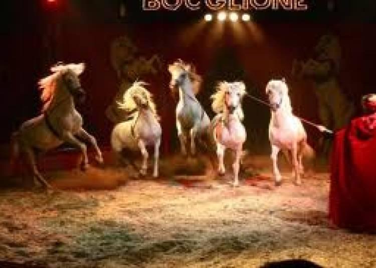 Cirque D'hiver Bouglione � Saint Etienne