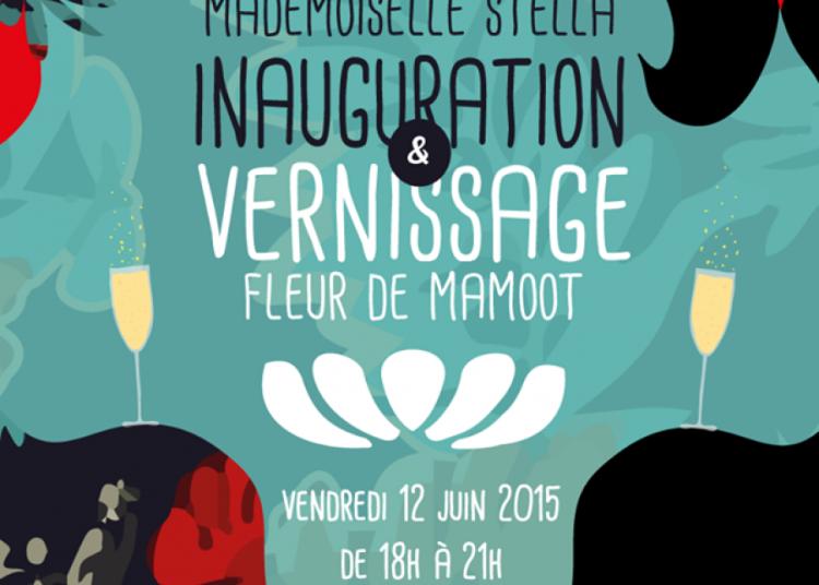 Exposition de dessins et produits d�riv�s � Montpellier