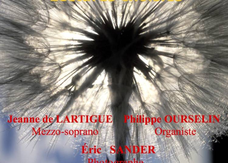 Opéra d'images du photographe Eric Sander à Paris 6ème