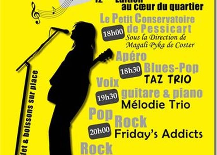 Taz Trio à Nice