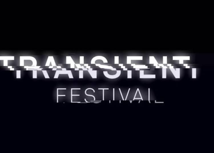 Transient Festival 2015