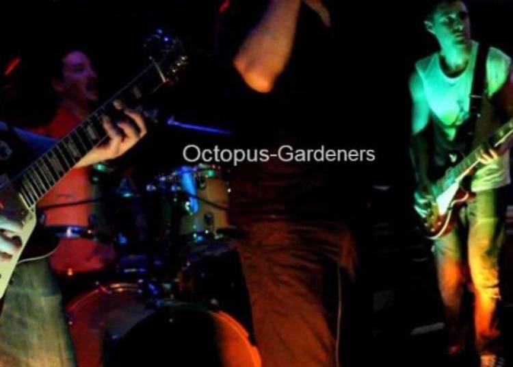 Octopus Gardeners à Paris 17ème