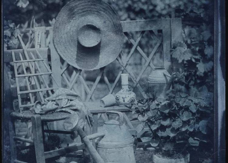 A chacun son jardin : une passion d'artistes � Beauvais