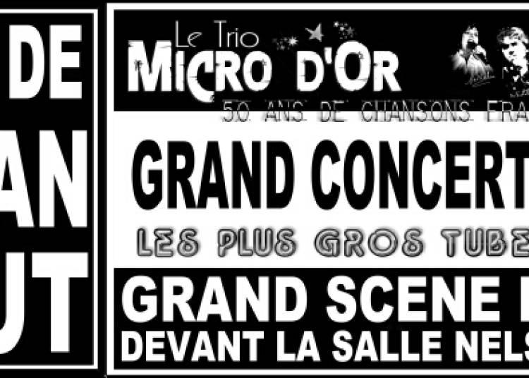 Le Trio Micro d'Or � Loupian