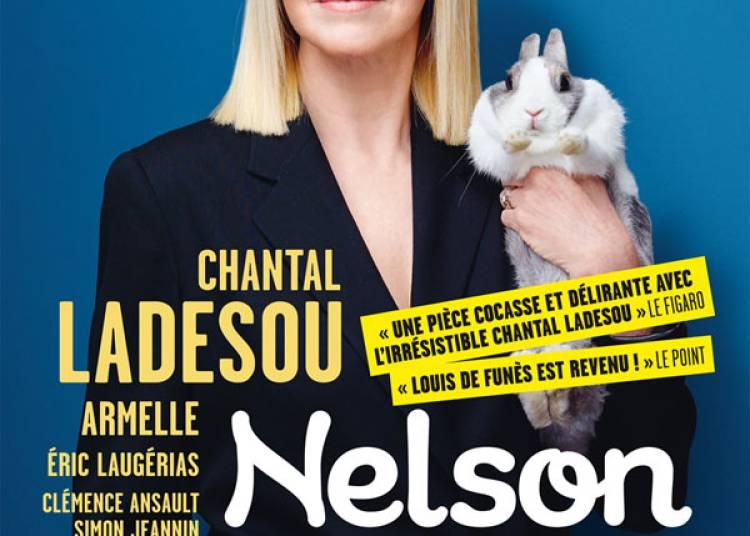 Nelson � Pau