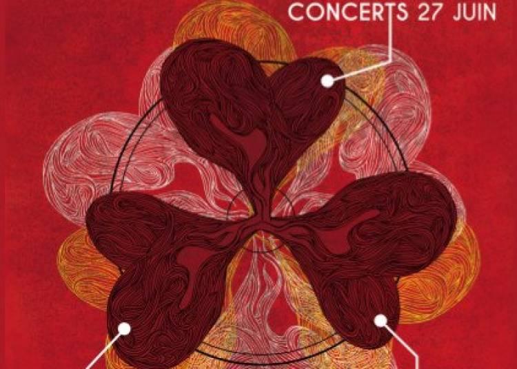 Au coeur de Cosne (Acte II) 2015