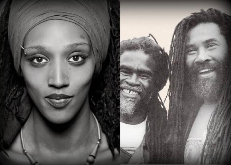 Soir�e Reggae United Kingdom � Le Blanc Mesnil