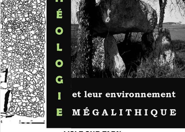 Les dolmens du nord-ouest du Tarn et leur environnement m�galithique. � Lisle sur Tarn